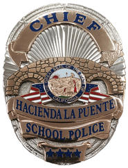Cheif Badge.jpg